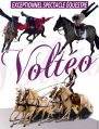 SPECTACLE EQUESTRE VOLTEO - PAL 19